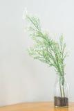 Ein Vase flolwers auf dem Holztisch Stockbilder