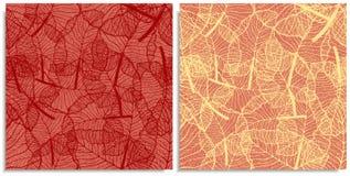 Ein Vektorsatz eines nahtlosen Musters mit Zweigen von Dschungelbl?ttern r r lizenzfreies stockfoto