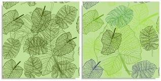 Ein Vektorsatz eines nahtlosen Musters mit Zweigen von Dschungelbl?ttern r r stockfoto