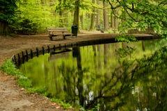 Ein verlassener Teich mit einer stillstehenden Bank Stockfotografie