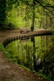 Ein verlassener Teich mit einer stillstehenden Bank Lizenzfreies Stockbild