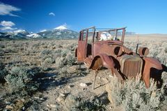 Ein verlassenes Auto mit einem Kuhskelett, das in den großes Becken-Nationalpark, Nevada fährt Stockfotografie
