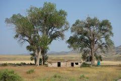 Ein verlassenes Blockhaus in Montana Lizenzfreie Stockfotos