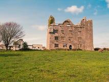 Ein verlassenes Haus in Irland Lizenzfreie Stockfotografie