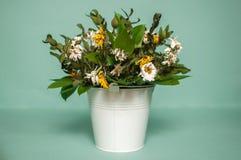 Ein verwelkter Blumenstrauß von Gänseblümchen in einem Eimer Lizenzfreies Stockbild
