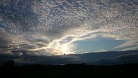 Ein Vogel im Himmel Stockfotografie