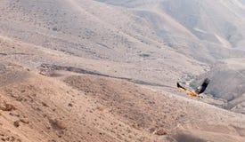 Ein Vogel im Wüste Negev Lizenzfreies Stockbild