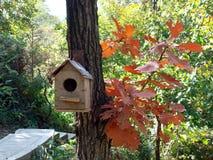 Ein Vogelhaus Stockbilder