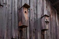 Ein Vogelhaus auf einer alten Blockhauswand Stockfotografie