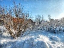Ein voller Tag des Winters, eine ländliche Landschaft mit einer rustikalen Gartenabdeckung Stockfotografie