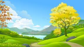 Ein Wald in einem Paradies lizenzfreie abbildung