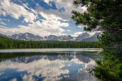 Ein Wald reflektiert in einem See Lizenzfreie Stockfotografie
