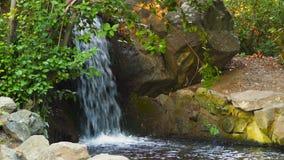 Ein Waldstrom ausgebreitet mit Steinen stock footage