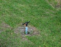 Bewässerungssystem Lizenzfreie Stockbilder