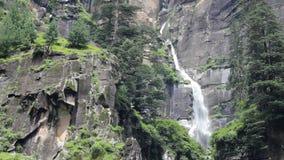 Ein Wasserfall auf einem Felsen mit einem Wald stock video