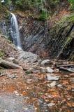 Ein Wasserfall auf einem Gebirgsfluss Lizenzfreie Stockbilder