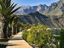 Ein Weg in Adeje, Teneriffa, auf Mirador Gla y Fer, mit Palmtrees und Bergen lizenzfreie stockfotos