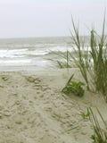 Ein Weg auf dem Strand Lizenzfreies Stockbild