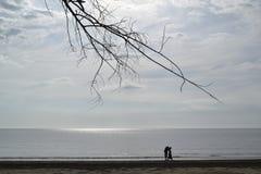 Ein Weg auf dem Strand Stockbild