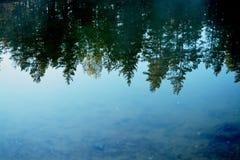 Ein Weg in der Natur Stockfotos