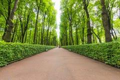 Ein Weg des Granits zerkrümelt im Stadtpark stockfotografie