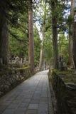 Ein Weg durch den alten buddhistischen Kirchhof Okunoin in Koyasan, Stockfoto