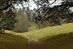 Ein Weg durch den Cotswolds-Park nah an Blenheim-Palast lizenzfreie stockfotos
