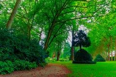 Ein Weg durch den großartigen, belaubten und grünen botanischen Garten von GijÃ-³ n ein August-Nachmittag im Jahre 2018 lizenzfreie stockbilder