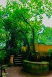 Ein Weg durch den großartigen, belaubten und grünen botanischen Garten von GijÃ-³ n ein August-Nachmittag im Jahre 2018 stockfotos