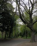 Ein Weg durch Durham stockbilder