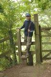 Ein Weg im Holz Lizenzfreie Stockbilder