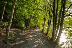 Ein Weg im Wald neben einem Fluss mit der Sonne Stockfotografie