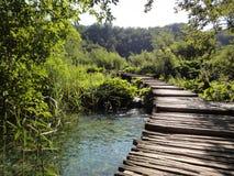Ein Weg in Plitvice-Park Lizenzfreies Stockfoto