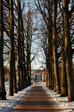Ein Weg an Vigelands Park Stockfotografie