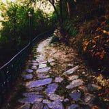 Ein Weg zum sich zu erinnern, Srinagar-uttrakhand Hügel, kühlender Herbst Stockfotos