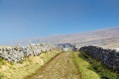 Ein Weg zwischen Bruchsteinmauern in den Yorkshire-Tälern Lizenzfreies Stockbild
