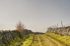 Ein Weg zwischen Bruchsteinmauern in den Yorkshire-Tälern Stockbilder