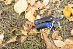 Ein weißer Handy liegt unter dem Herbstlaub Lizenzfreie Stockfotos