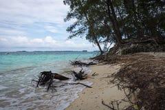 Ein weißer Sandstrand mit einigen toten Wurzeln auf Harapan-Insel, Indonesien Strand mit schönem Türkiswasser und Insel auf stockfotos