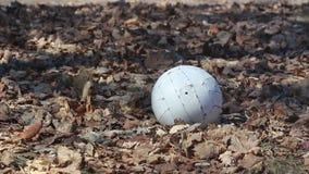 Ein weißer Volleyball, der auf einem Rasen von Toten sitzt, verlässt mit starkem Wind stock footage