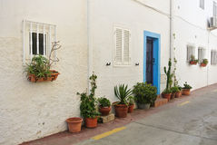 Ein weißes Haus und eine Stellung nahe ihr Töpfe Blumen und andere Anlagen Stockfoto