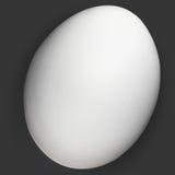 Ein weißes organisches Ei getrennt auf Schwarzem Stockbilder