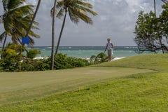 Ein weiblicher Golfspieler, der einen Chipschuß vorbereitet Stockfotografie