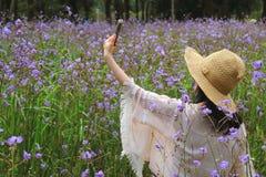 Ein weibliches nehmendes Selfie-Bild auf dem Murdannia-Blumen-Gebiet mit ihrem intelligenten Mobiltelefon Stockfoto