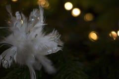 Ein Weihnachtsball Lizenzfreie Stockfotos