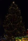Ein Weihnachtsbaum Lizenzfreie Stockbilder