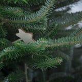 Ein Weihnachtshintergrund der Tanne ein Baum Stockfotos