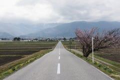 Ein weiter Weg zwischen zwei Ackerland Stockfoto