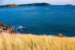 Ein Weitwinkel der Bucht mit gelbem Gras in Vordergrund nahe gelegenes n lizenzfreie stockfotografie