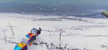 Ein wenig Farbe auf dem Strand stockfotografie